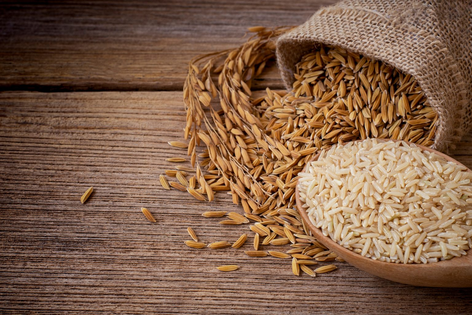 Bio-Reciclados - Restos de fibras vegetales de la planta del arroz